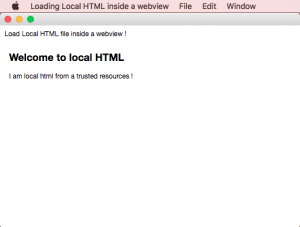webview-local-html